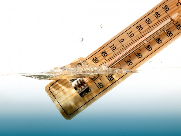 Keep the temperature of your hydroponics reservoir right on target for the best growing results.